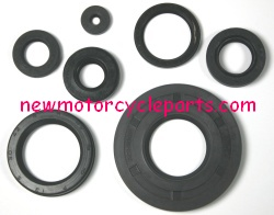 Oil Seal Kits and Various Other Sealing Parts